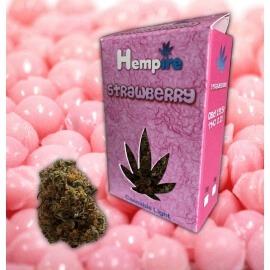 Strawberry - Hempire Hempire €10,00