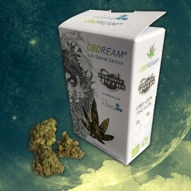 CBDream 420 Limited Edition - Paradise Seeds & Hempire