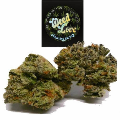 Amazing Journey (Cookie Kush) - Weed of Love Weed of Love €12,00
